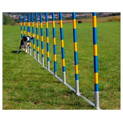 Slalom Agilyt para Cães (Oficial) com 12 Postes